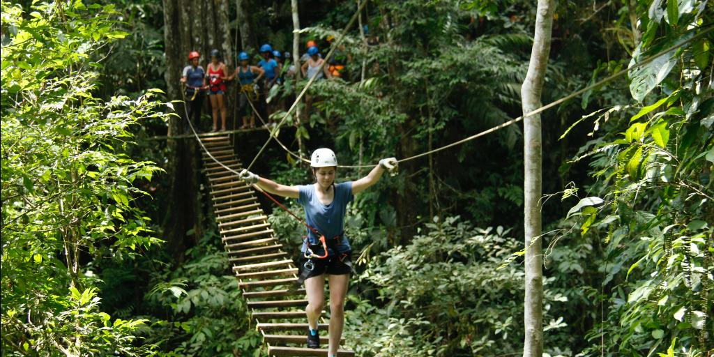A volunteer wearing a harness, walking across a suspension bridge in the jungle.