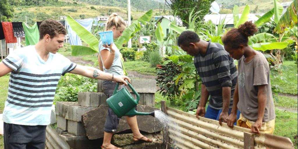 A volunteer watering a garden in Fiji.