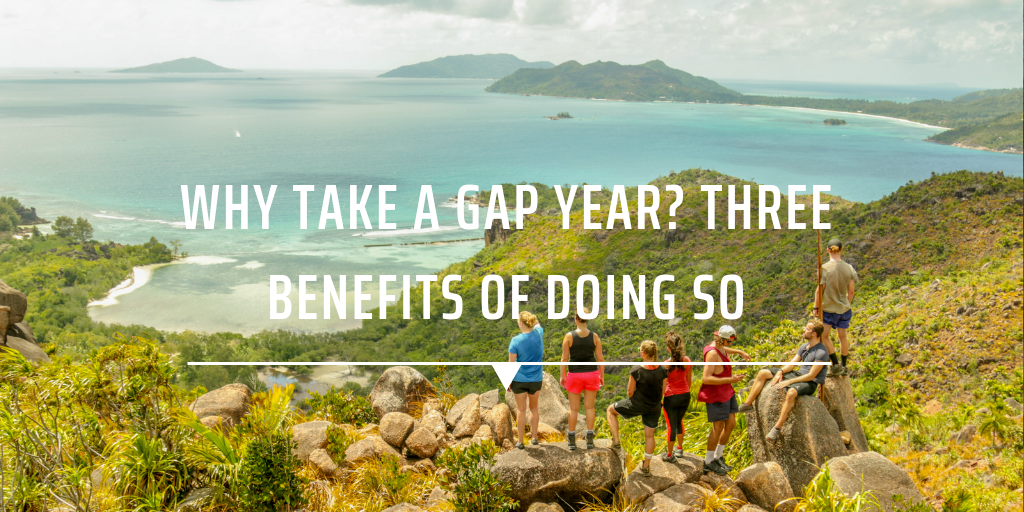 pros and cons of a gap year