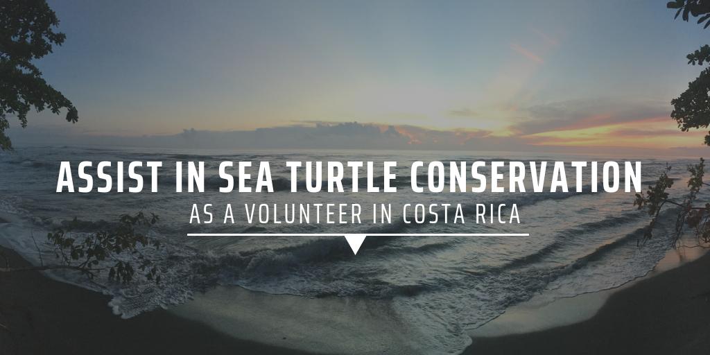 Costa Rica Volunteer