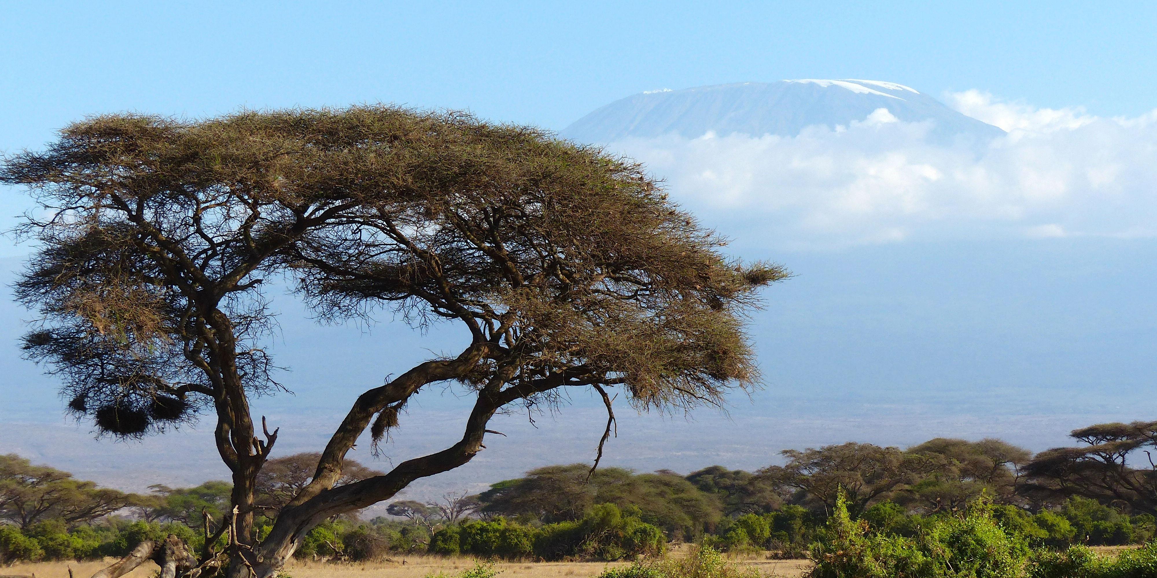 where is mount kilimanjaro