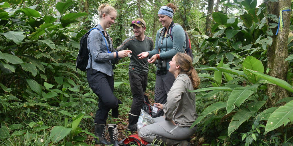 A volunteer group from GVI on a jungle expedition in Costa Rica