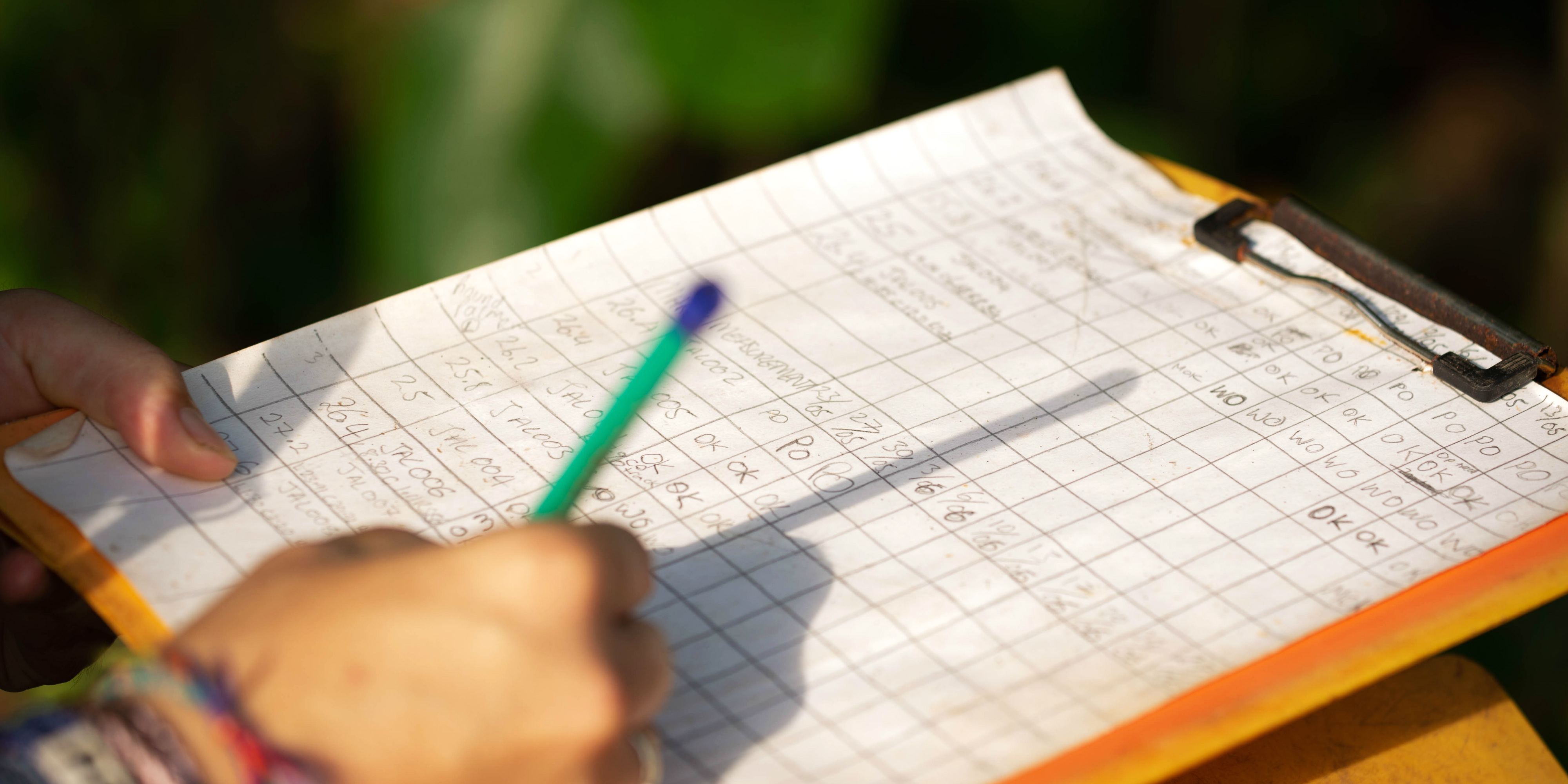 While contributing to conservation research in Costa Rica, a GVI participant captures data.