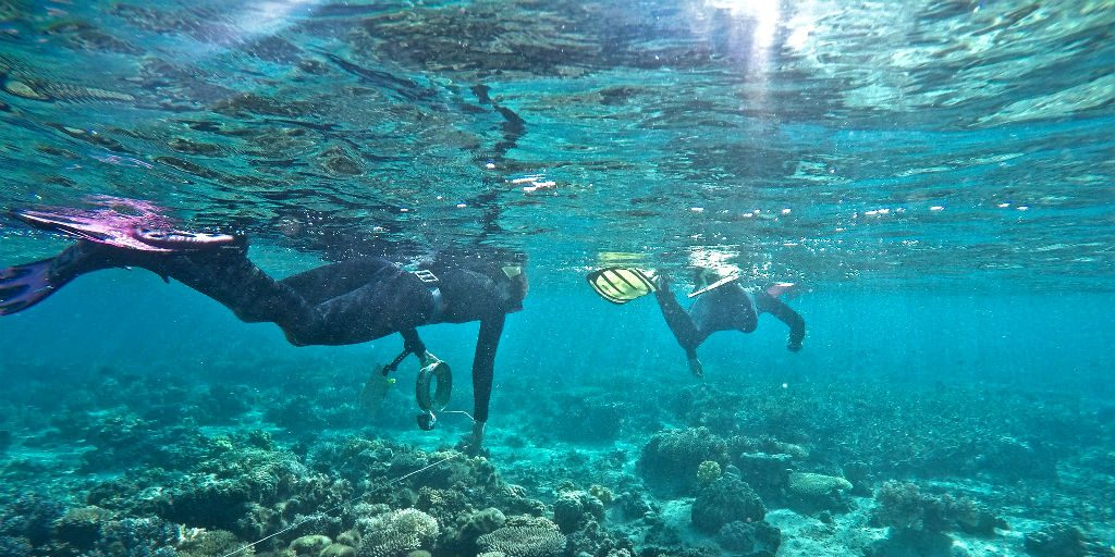 Use your gap year abroad to learn a new skill, like diving!