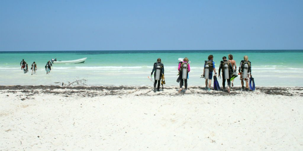 Volunteer in Mexico on our Marine Conservation program and dive in the stunning Caribbean sea.