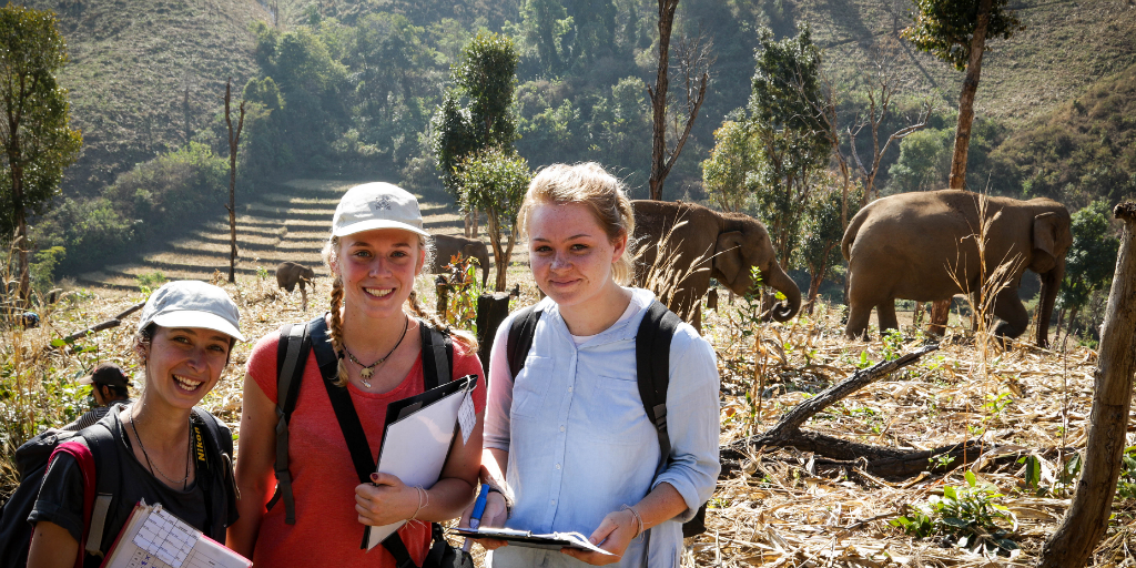Educational Gap Year - volunteers doing research