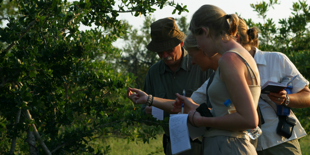 Gain real world experience and make an impact as a field guide when you volunteer abroad in Limpopo.