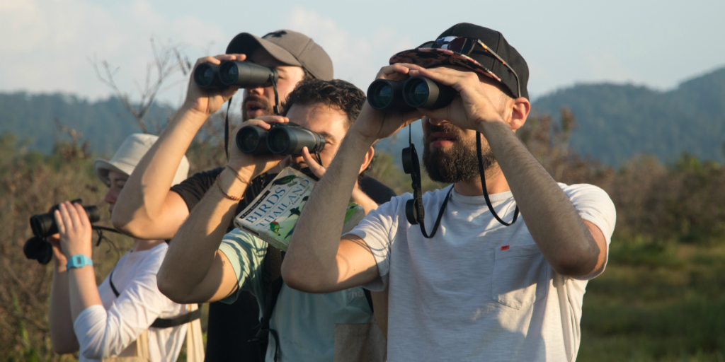 Volunteers using binoculars to survey birds in Thailand