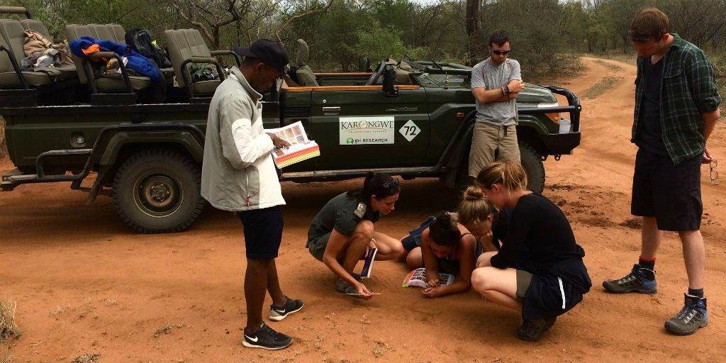 Volunteers in limpopo contributing towards the conservation of endangered species