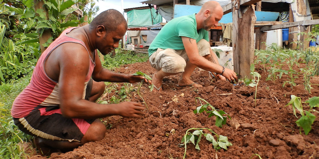 Volunteers planting vegetable seedlings to remove community's dependency on others for their food supply
