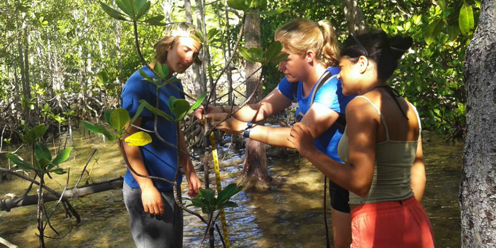 Volunteer trips for teens will teach you valuable skills, like how to work in a team