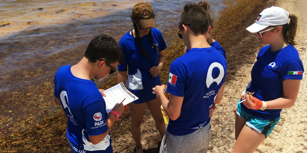 Learn how to scuba dive during your high school volunteer abroad program
