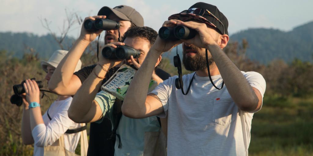 volunteers in thailand contributing towards conservation through bird surveys