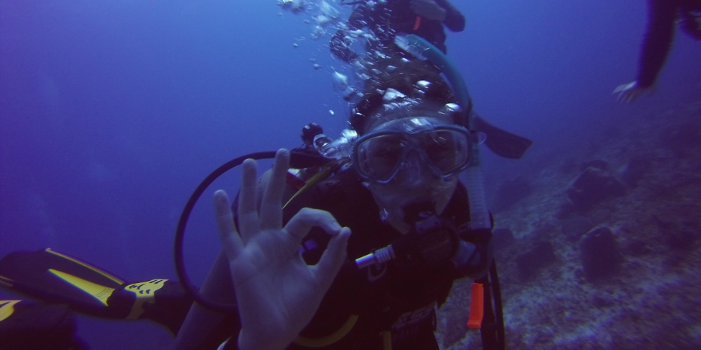 A career break is the perfect opportunity for you to explore your hobbies/ passions, like scuba diving!