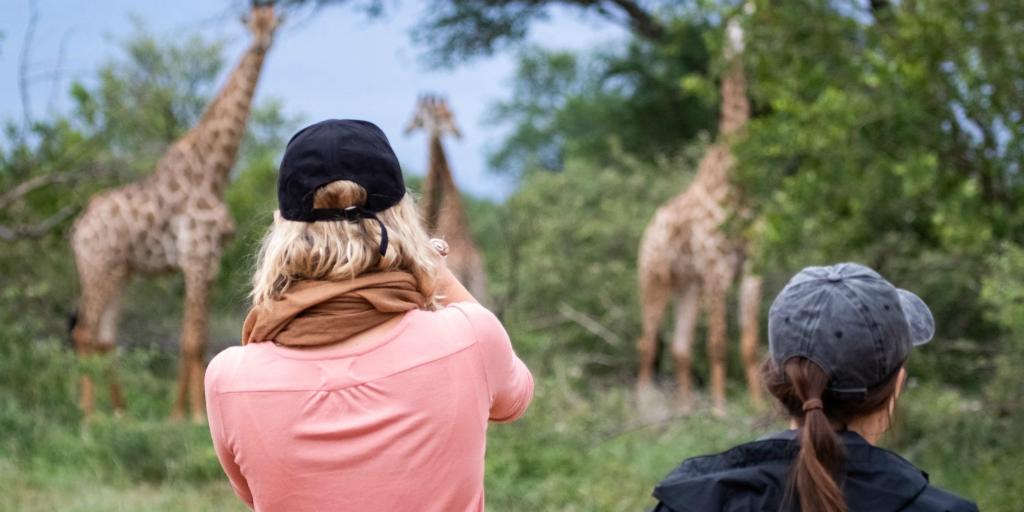 2 participants watching giraffes